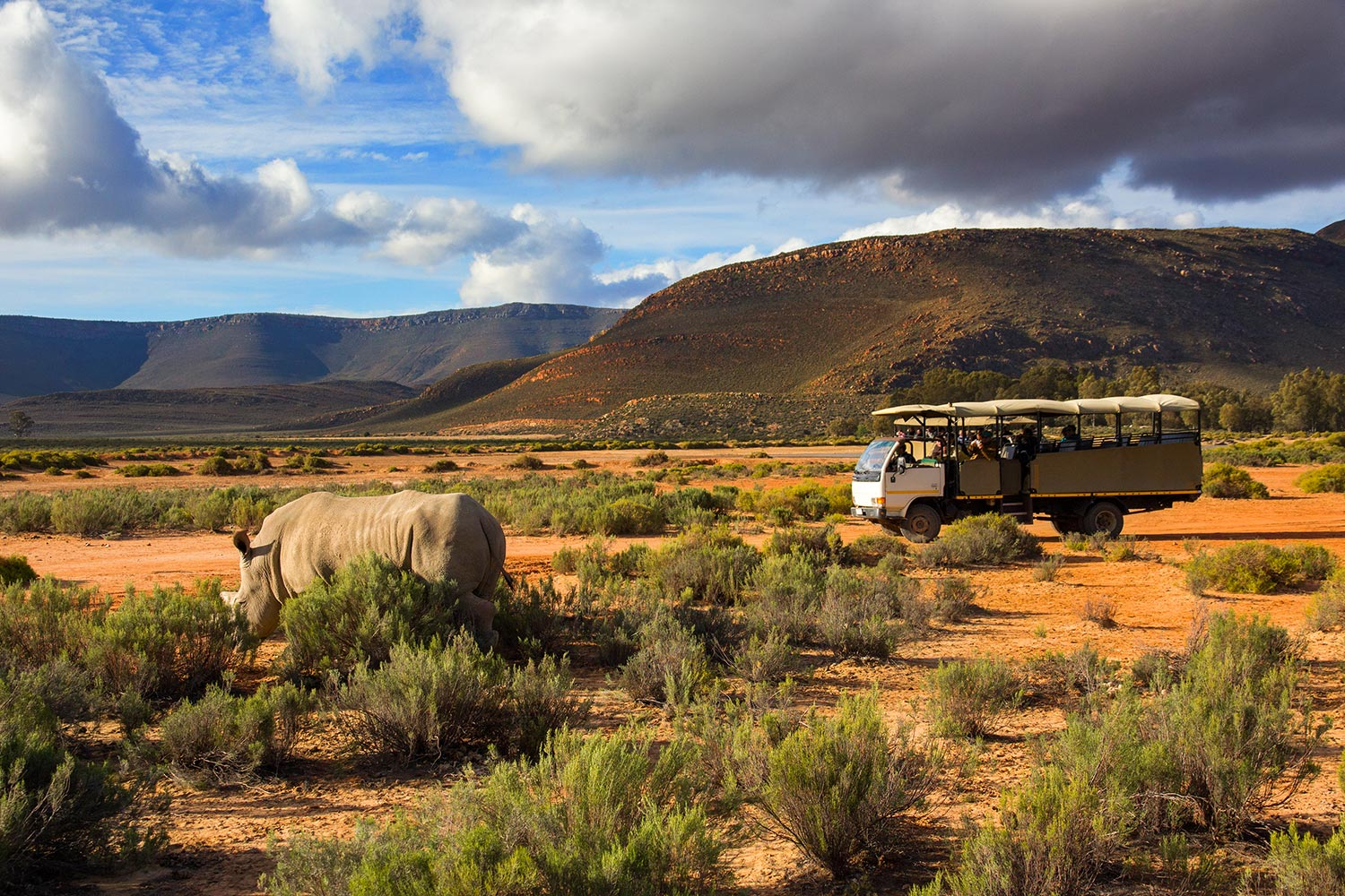 south-africa-5
